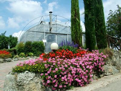 giardino+orto 17-8-08 006