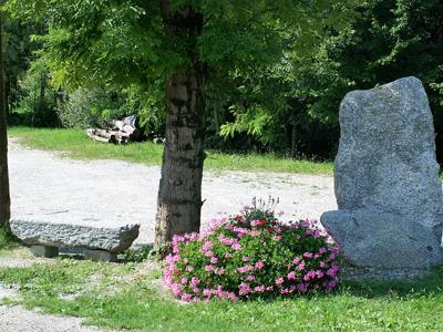 giardino+orto 17-8-08 112 (4)