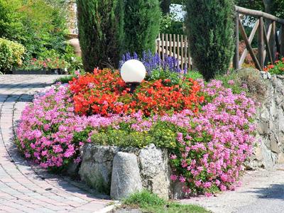 giardino+orto 17-8-08 114 (2)