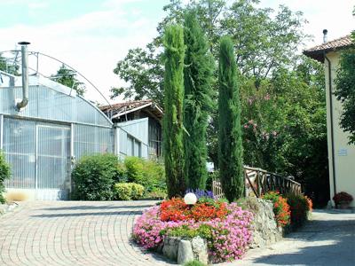giardino+orto 17-8-08 115 (6)